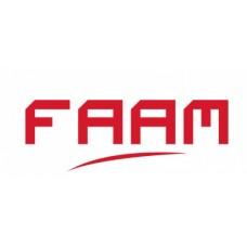 Batteria Avviamento FAAM